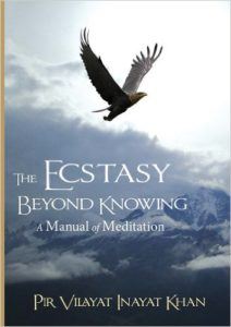 The Ecstasy Beyond Knowing: A Manual of Meditation